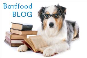 Barffood Blog